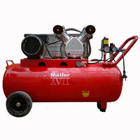 Moller AC420/100 Компрессор воздушный(ременной)